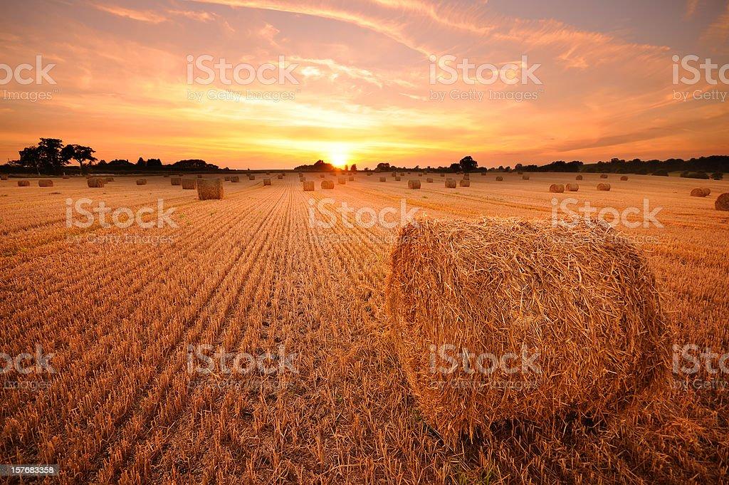 Hay Bale Sunset stock photo