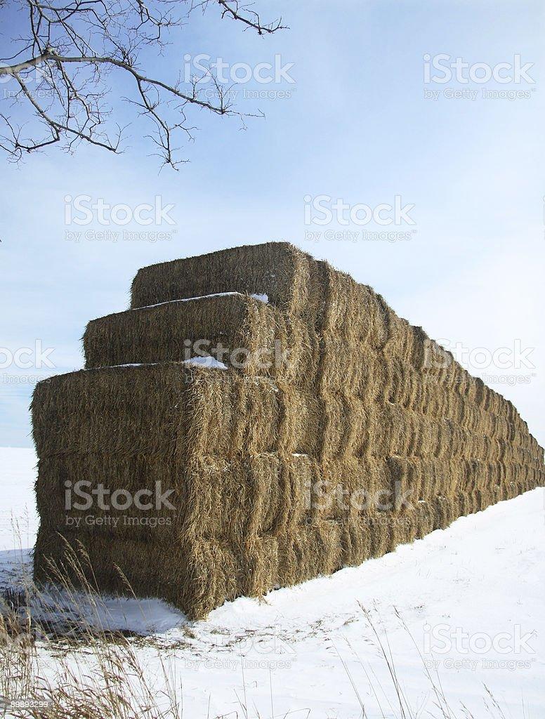 Hay Bale Wall royalty-free stock photo