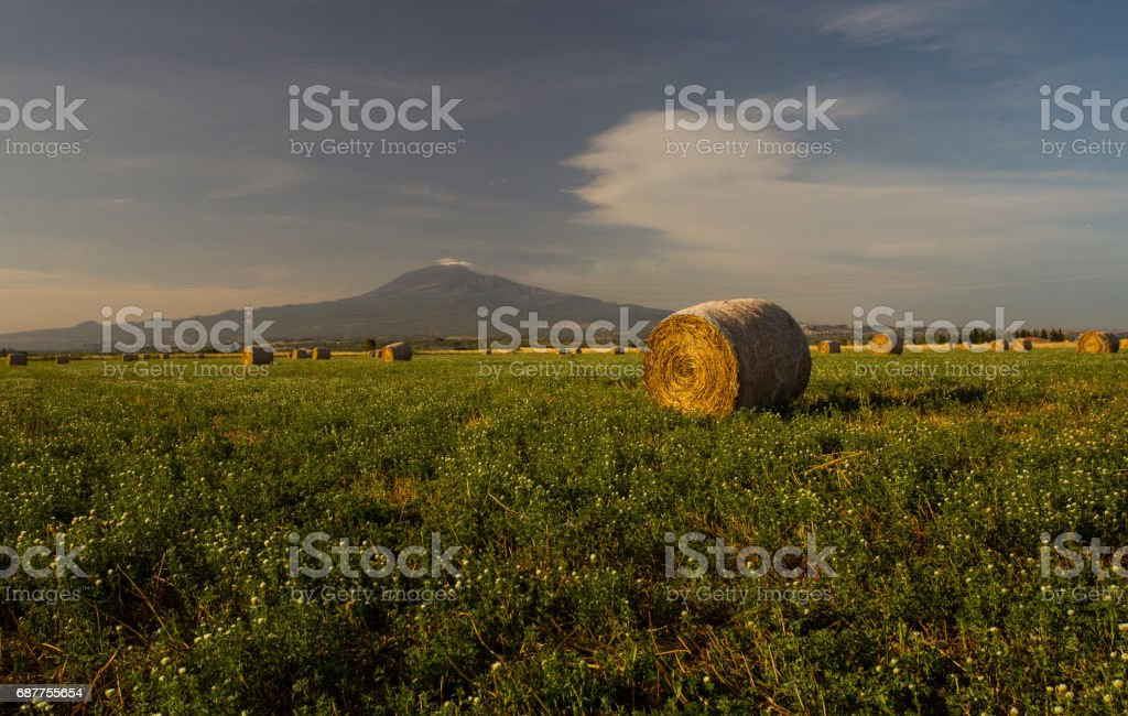 Hay bales againts moutain backdrop stock photo