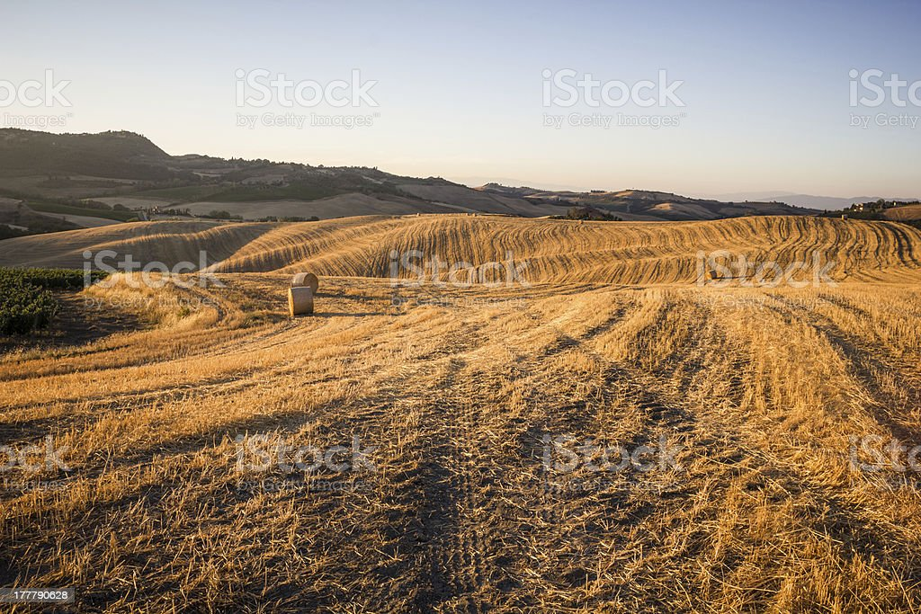 Hay bales and rolling landscape at sunset stock photo