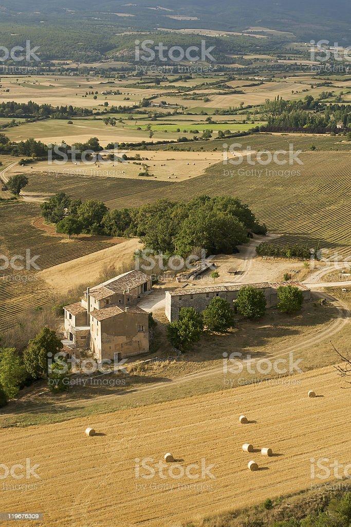 Hay Bales and Vineyards royalty-free stock photo