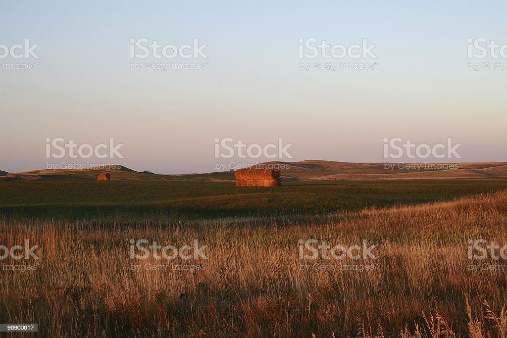 Hay bales at Dawn royalty-free stock photo