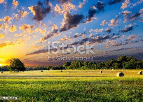 istock Hay Bales at Sunrise 503150251