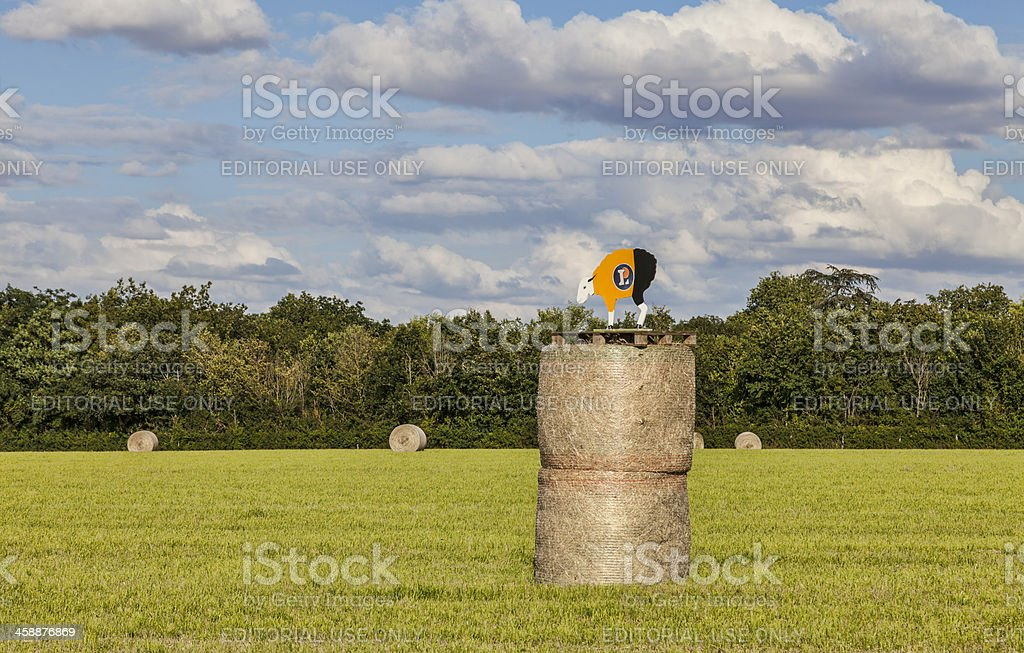 Hay Bales During Le Tour de France royalty-free stock photo