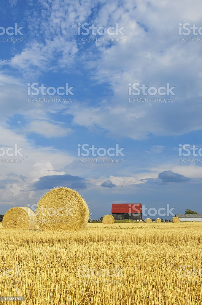 Hay bales field, barn with red roof stock photo
