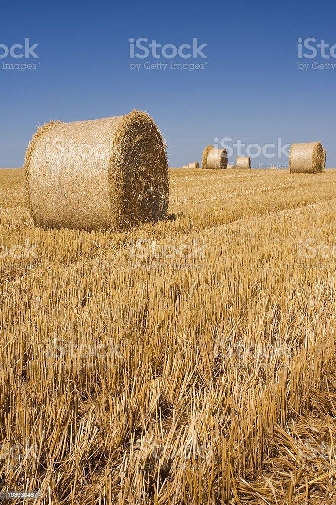 Hay bales, Idyllic rural royalty-free stock photo