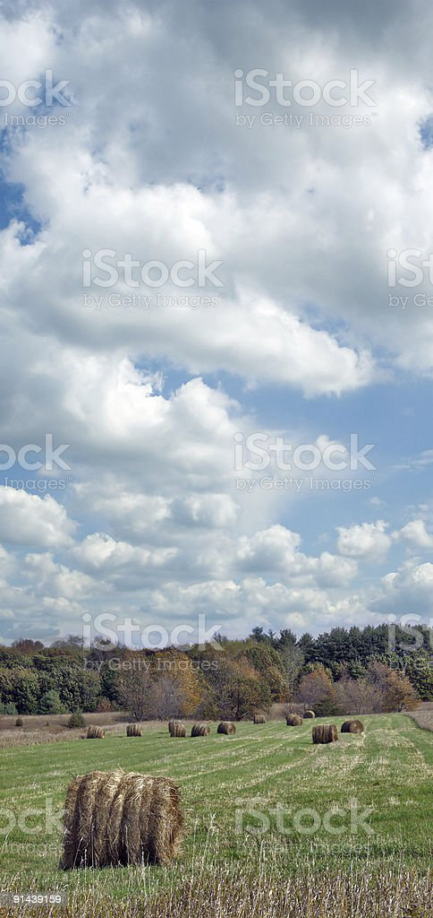 Hay Bales in a Field royalty-free stock photo