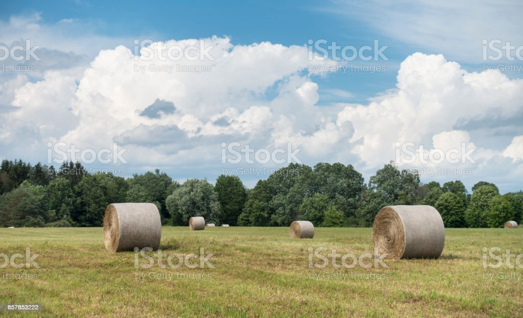 Hay Bales in a Hudson Valley Field stock photo