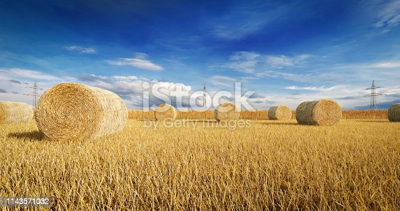 Digitally generated round bales of straw on the field stubble after harvest.  The scene was rendered with photorealistic shaders and lighting in Autodesk® 3ds Max 2016 with V-Ray 3.6 with some post-production added.