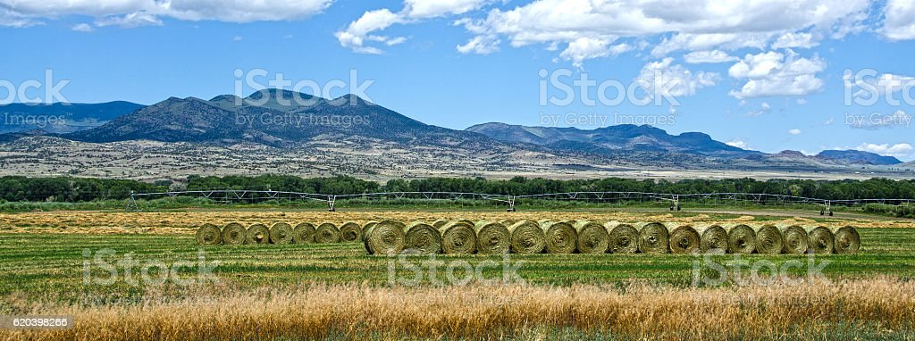 Hay Bales in the San Luis Valley stock photo