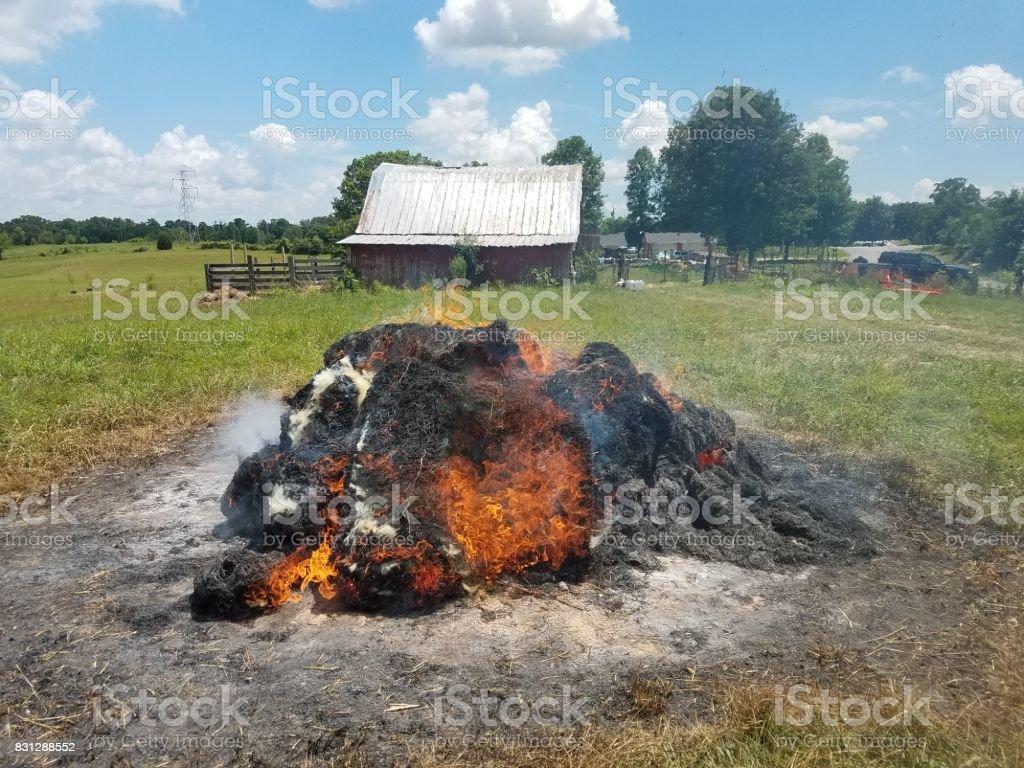 Hay bales on fire in field stock photo