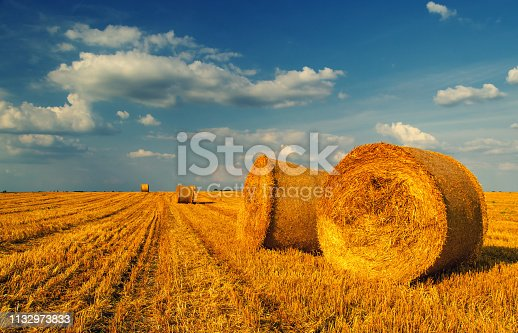 Hay bales on the agricultural field after harvest on a sunny summer day.