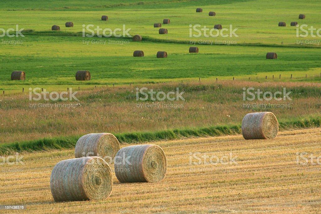 Hay Bales on the Prairie royalty-free stock photo