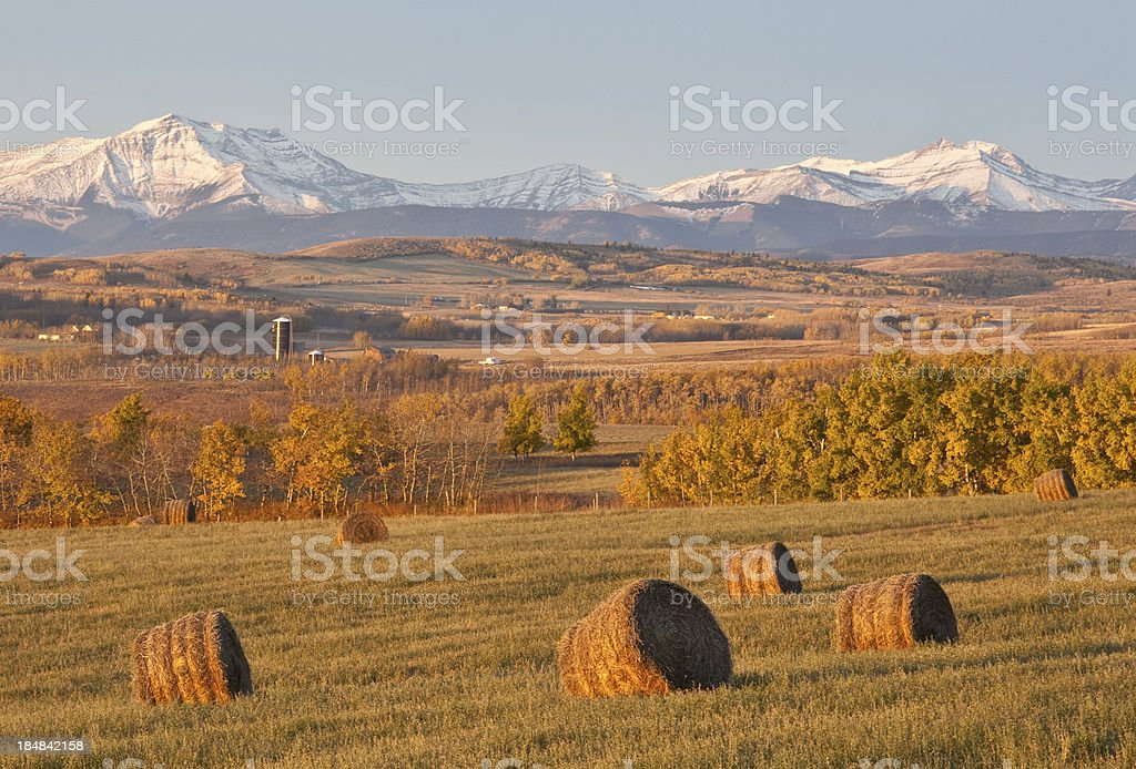 Hay Bales on the Prairie stock photo