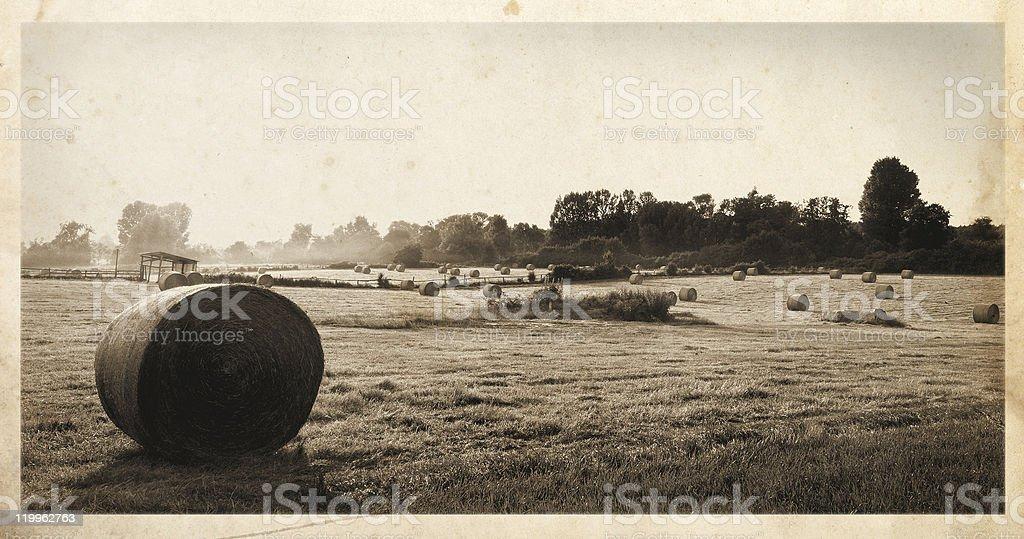 Hay bales postcard stock photo