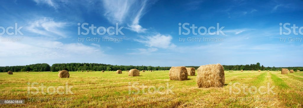 Hay bales with blue sky stock photo