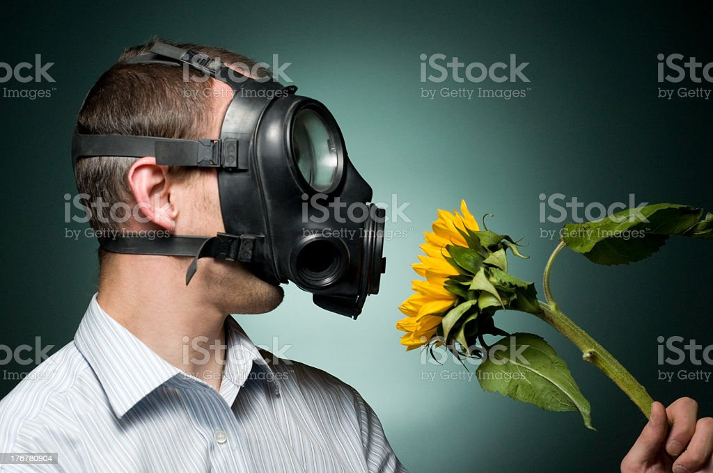 hay fever sufferer stock photo