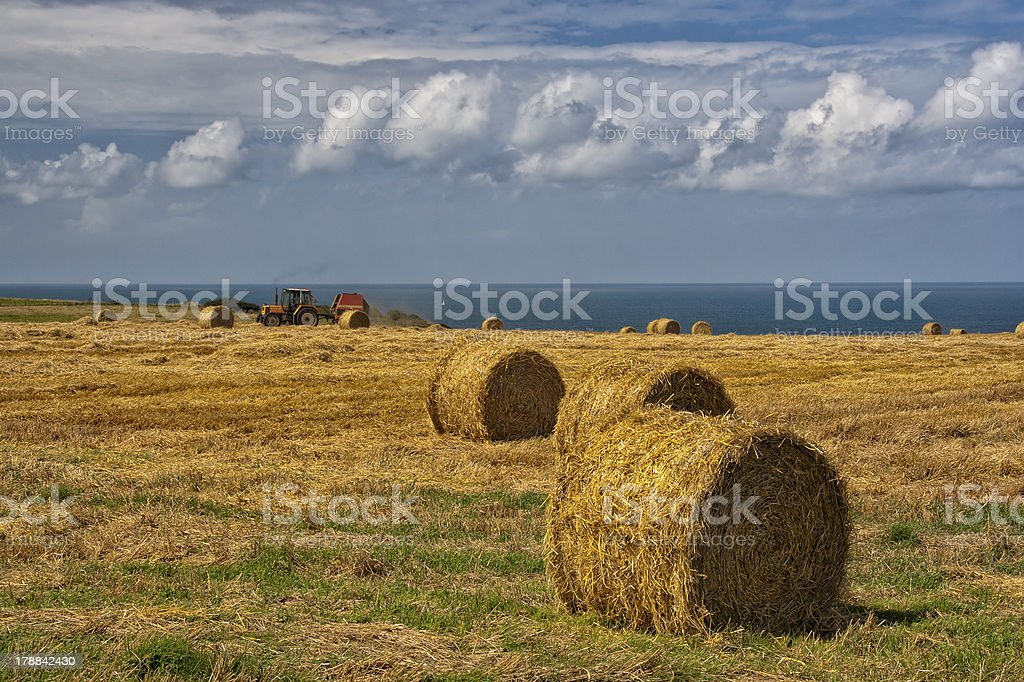 Hay harvest in Normandy - France stock photo