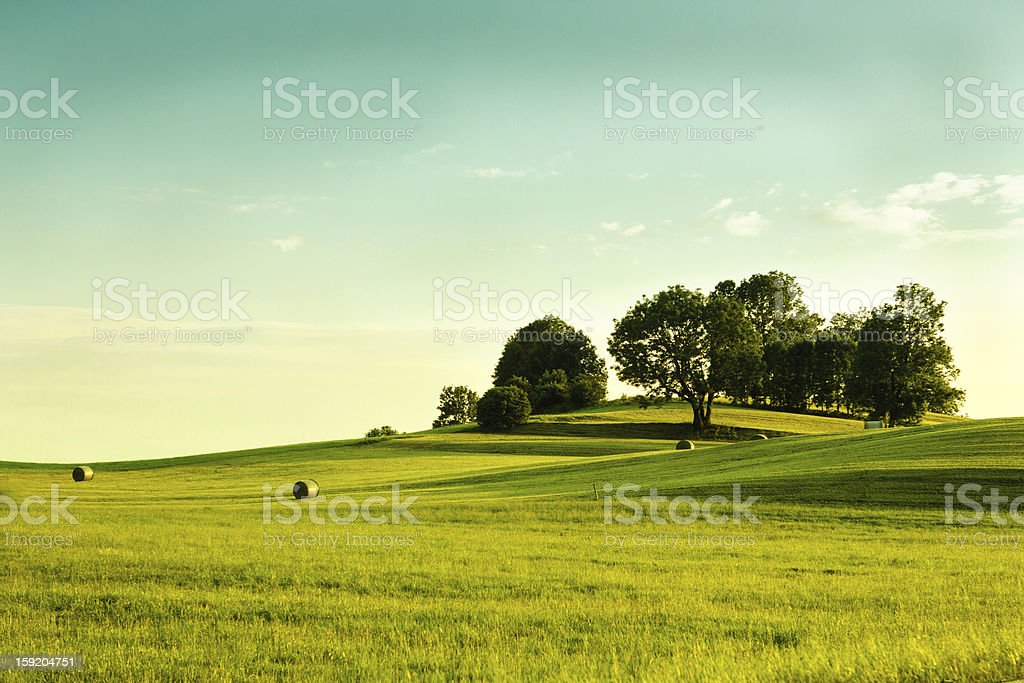 Hay harvest in the Southern Bavaria stock photo