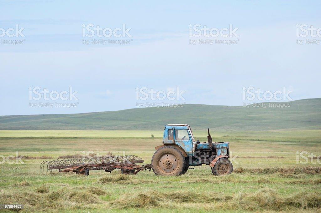 hay harvesting royalty-free stock photo
