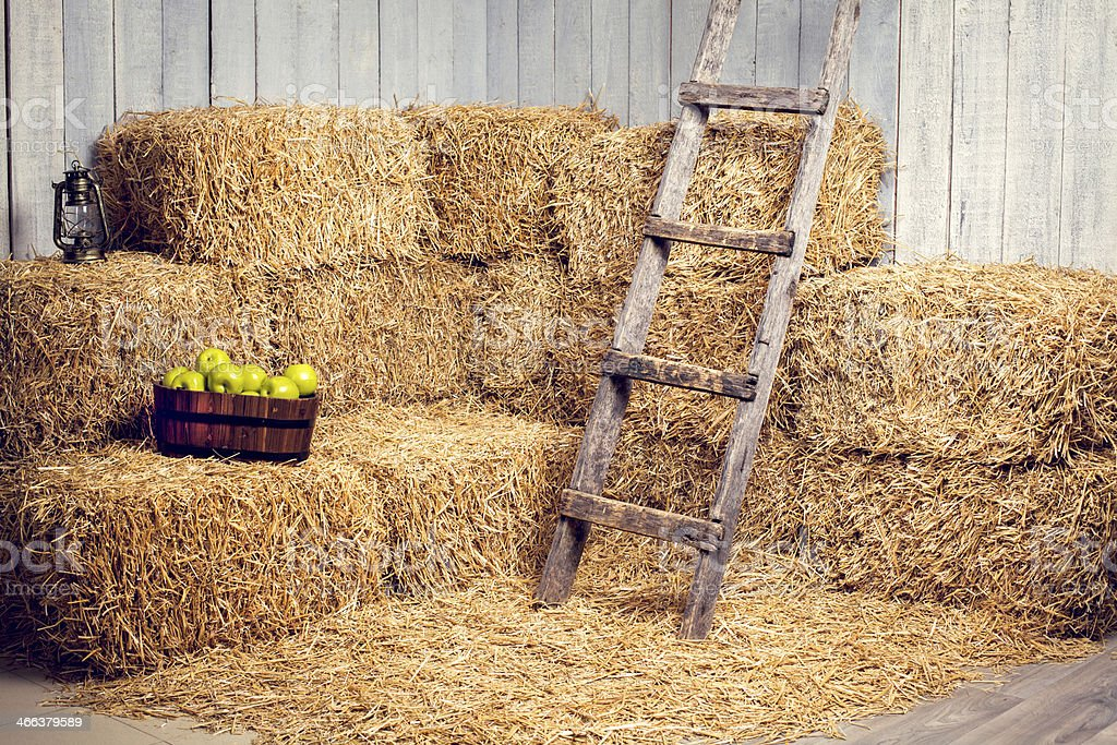 hay in the studio with stairs and apples stock photo