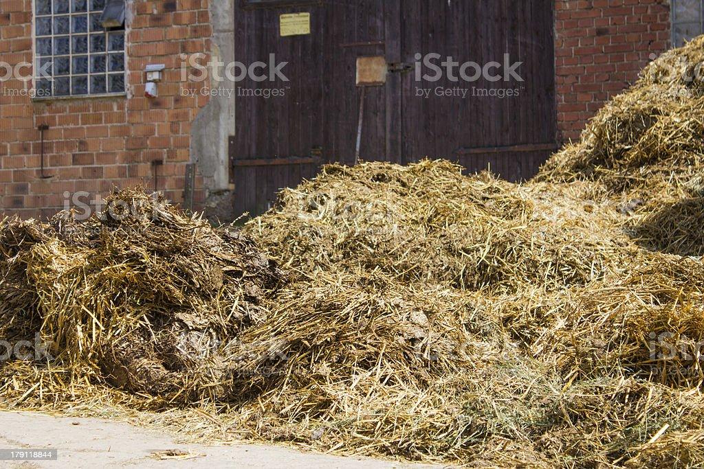 hay on a farm royalty-free stock photo