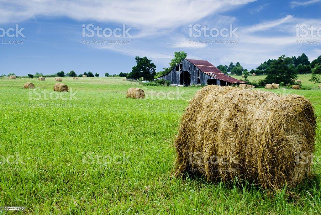 Hay on the Farm royalty-free stock photo