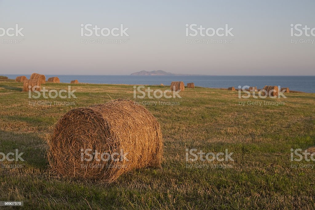 Hay on the Sea in Magdalen Islands royalty-free stock photo
