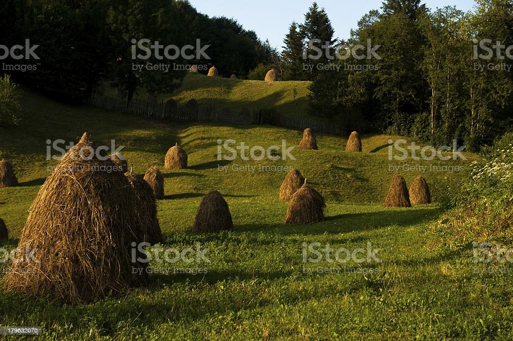 Hay pile royalty-free stock photo