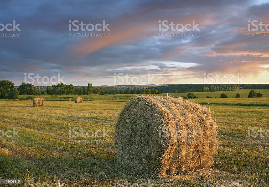 Hay rolls and dramatic sunset stock photo