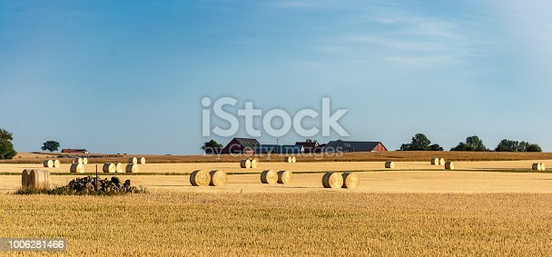 istock Hay Rolls in a farm field. Harvest concept. 1006281466