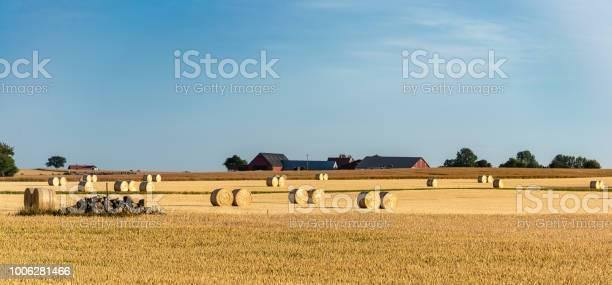 Hay rolls in a farm field harvest concept picture id1006281466?b=1&k=6&m=1006281466&s=612x612&h=iyhrpip7ogxe4zrnasjqkagdd 54q1n1cxbjondgdak=