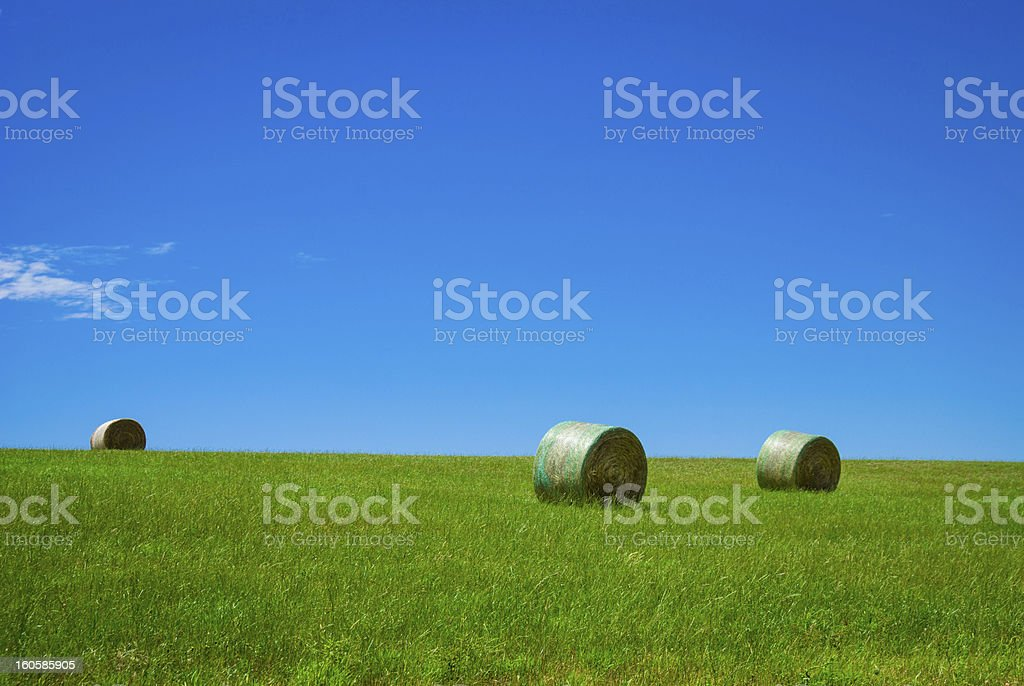 Hay Rolls in Paddock royalty-free stock photo