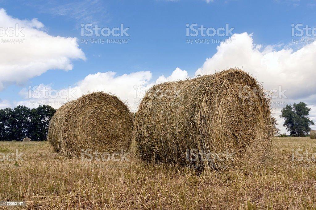Heno rolls on meadow foto de stock libre de derechos