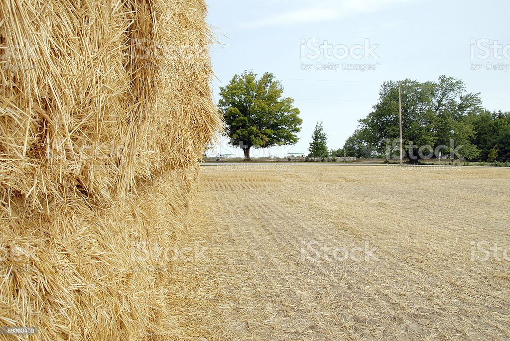 Hay Stack in the Field royalty free stockfoto