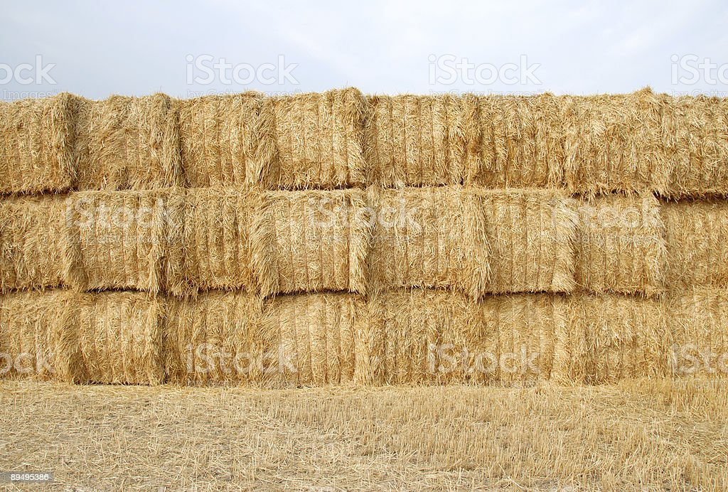 Hay Stack in the Field royaltyfri bildbanksbilder