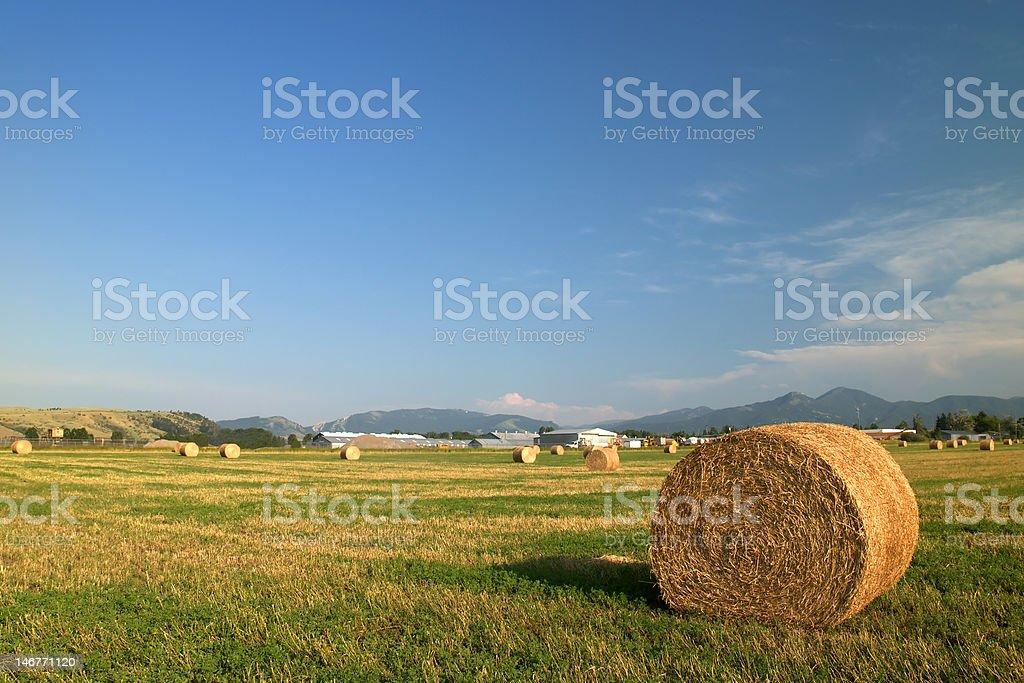 Hay Stacks in Montana royalty-free stock photo