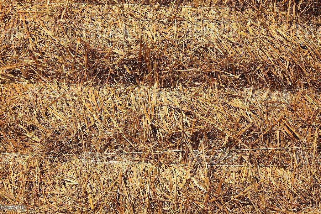 Hay Texture royalty-free stock photo