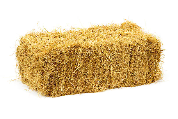 Haybale isolated on white Golden square haybale isolated on white. They have always been known as square haybales in the agricultural community even though the sides are rectangular in shape. There are companion images: hay stock pictures, royalty-free photos & images