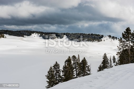 Hayden Valley in the winter with the area covered in snow.