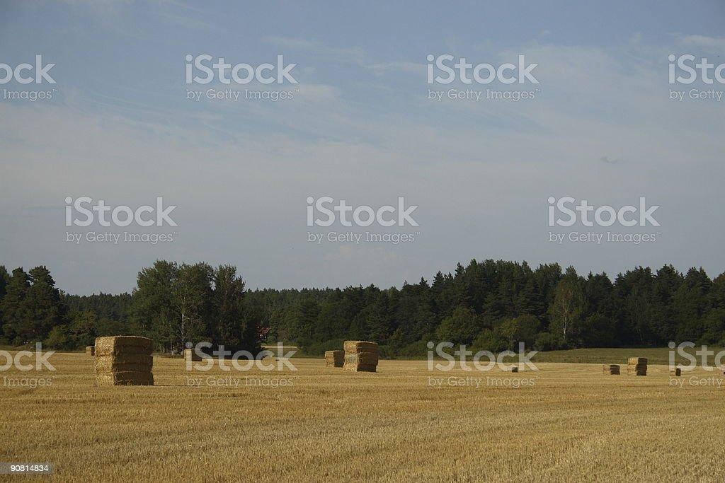 Hayharvest stock photo