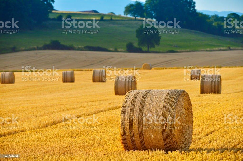Haystack and Hay Bales stock photo