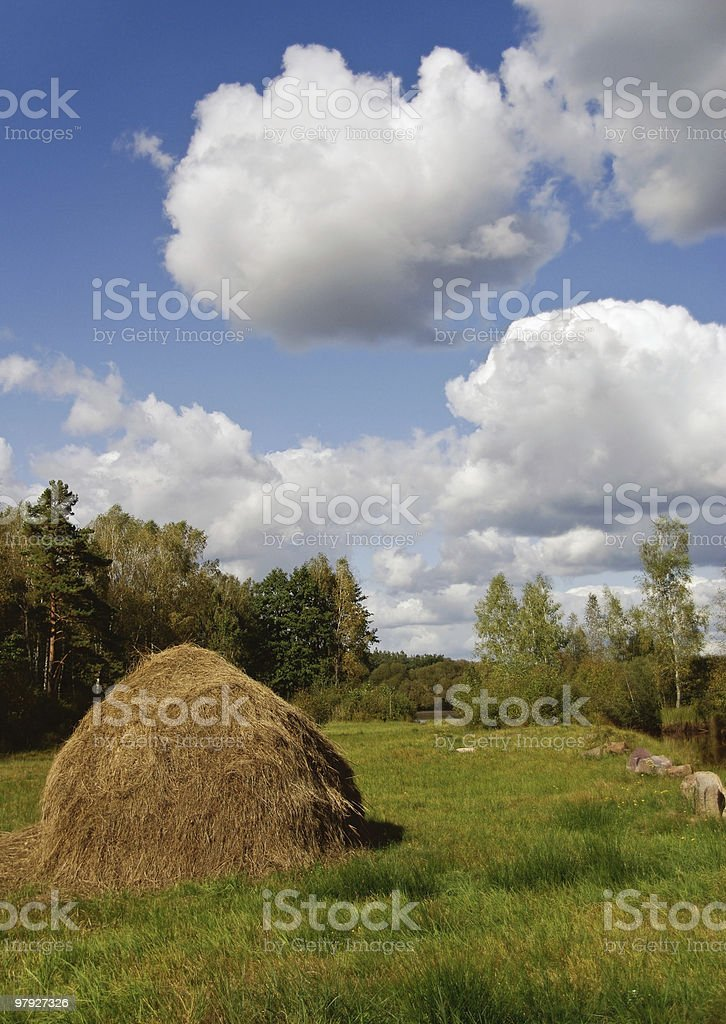 haystack on the meadow royalty-free stock photo