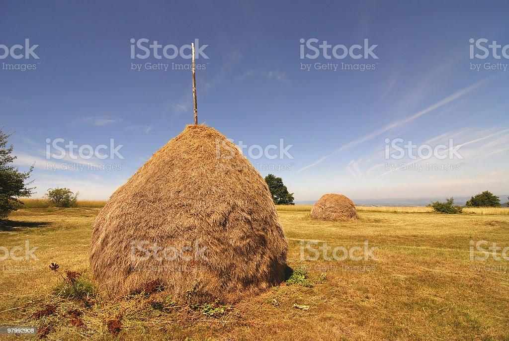 haystack royalty free stockfoto