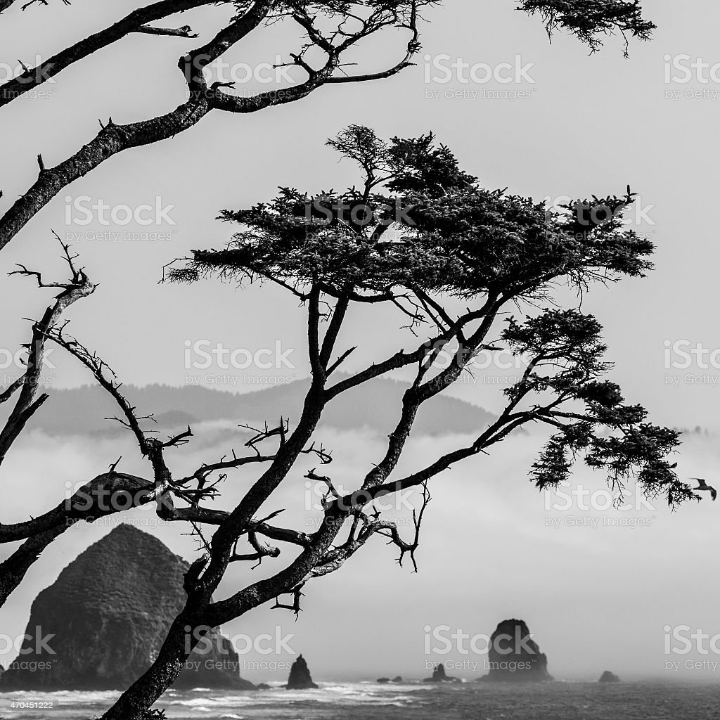 Haystack Rock stock photo