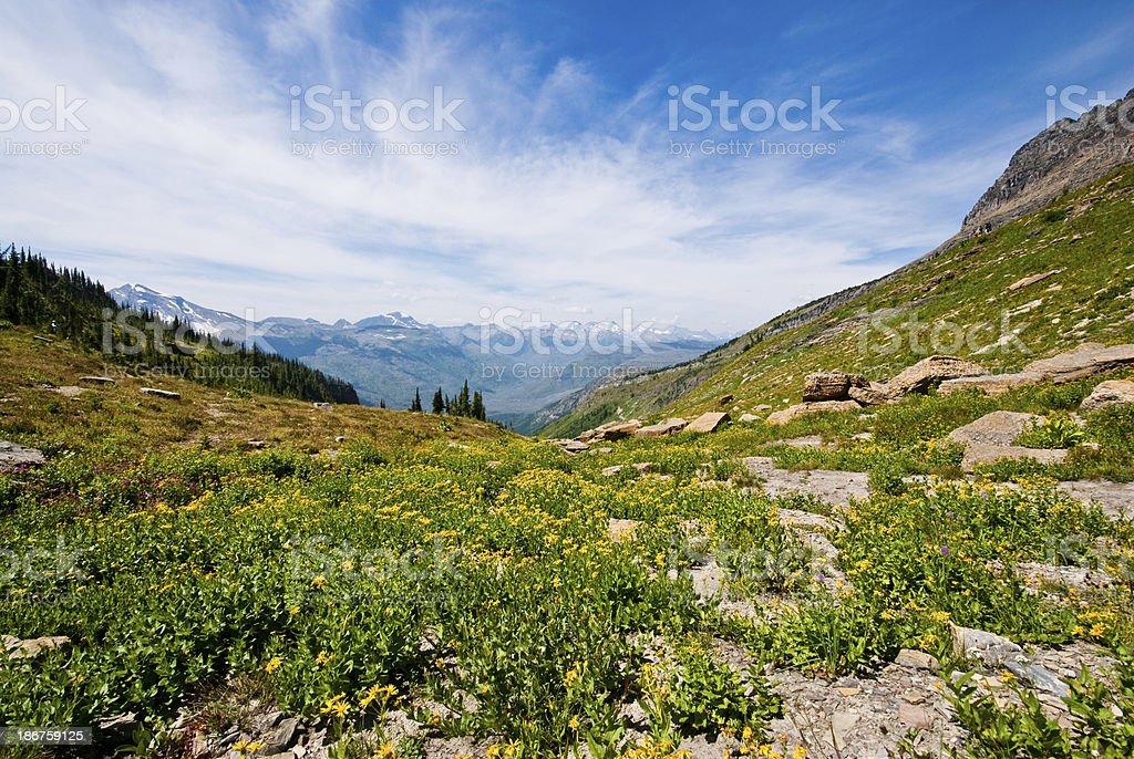 Haystack Saddle royalty-free stock photo