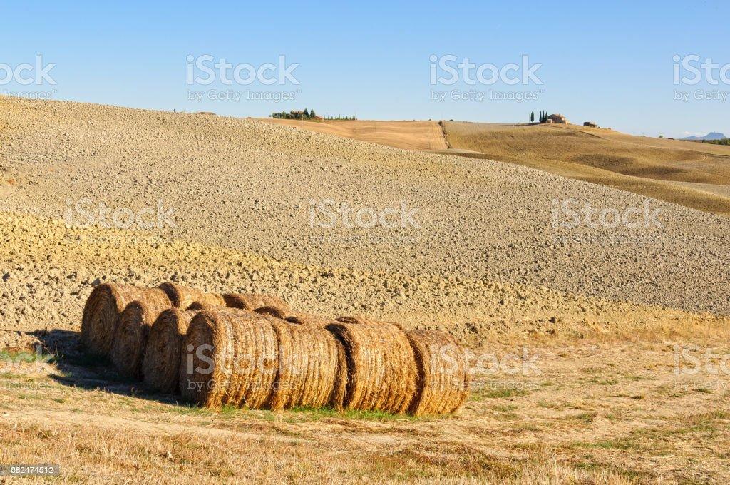 Haystacks - Crete Senesi royalty-free stock photo