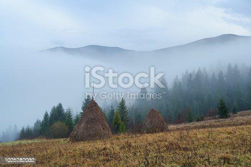 istock Haystacks in a mountain village 1025282032