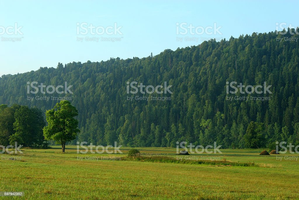 Haystacks morning on the field foto royalty-free