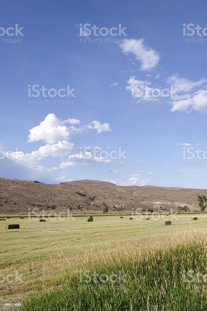 Haystacks on Idaho farmland royalty-free stock photo
